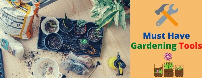 """Tool-it"" 2020 – Wise Gardening Investment"